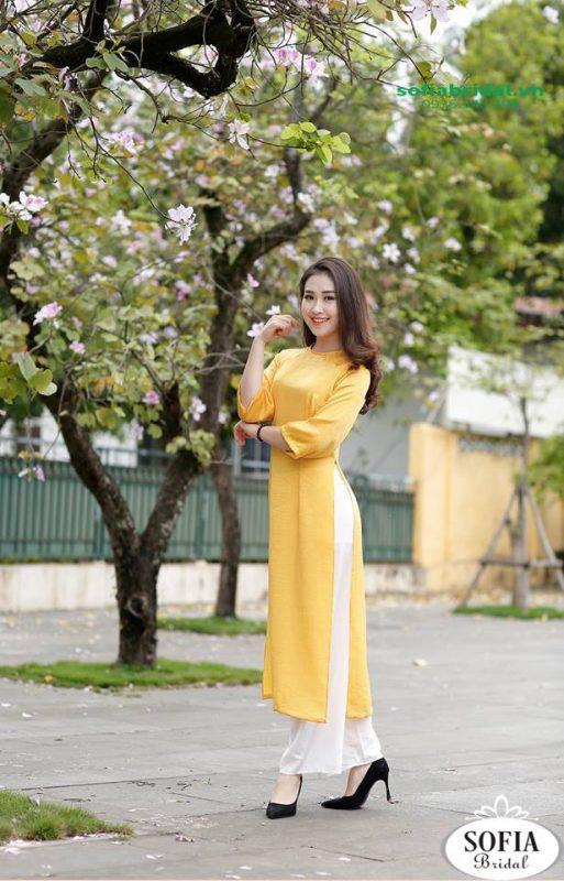 Hiện nay, các công ty, doanh nghiệp đều sử dụng áo dài dồng phuc mang đến sự thanh lịch, tinh tế và ấn tượng với khách hàng.